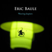 Weaving Chapters by Eric Baule