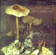 Ascension by Djam Karet