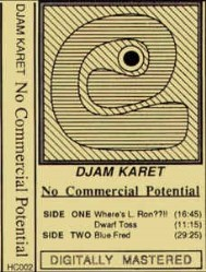 No Commercial Potential by Djam Karet