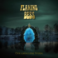 Der Gefallene Stern by Flaming Bess