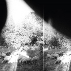 Asunder, Sweet and Other Distress by Godspeed you Black Emperor!
