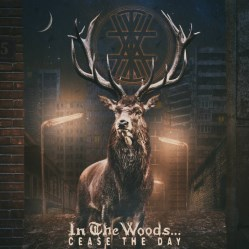 Cease The Day by In the Woods