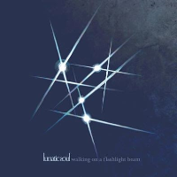 Walking on a Flashlight Beam by Lunatic Soul