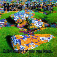 In the Comfort of Your Own Home by Mother Black Cap