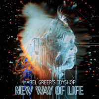 New Way Of LIfe by Mabel Greer's Toyshop
