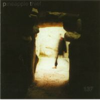 137 by The Pineapple Thief