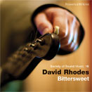 Bittersweet by David Rhodes (The David Rhodes Band)