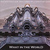 What In The World by Richard Sinclair