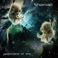 Questions of Life by Shamall