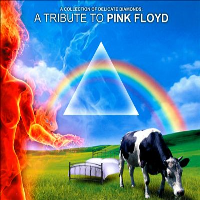 Collection of Delicate Diamonds: A Tribute To Pink Floyd by Tributes: Pink Floyd