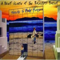 A Brief Glimpse Of The Relentless Pursuit - Tribute To Pink Floyd by Tributes: Pink Floyd