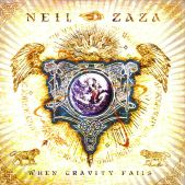 When Gravity Fails by Neil Zaza